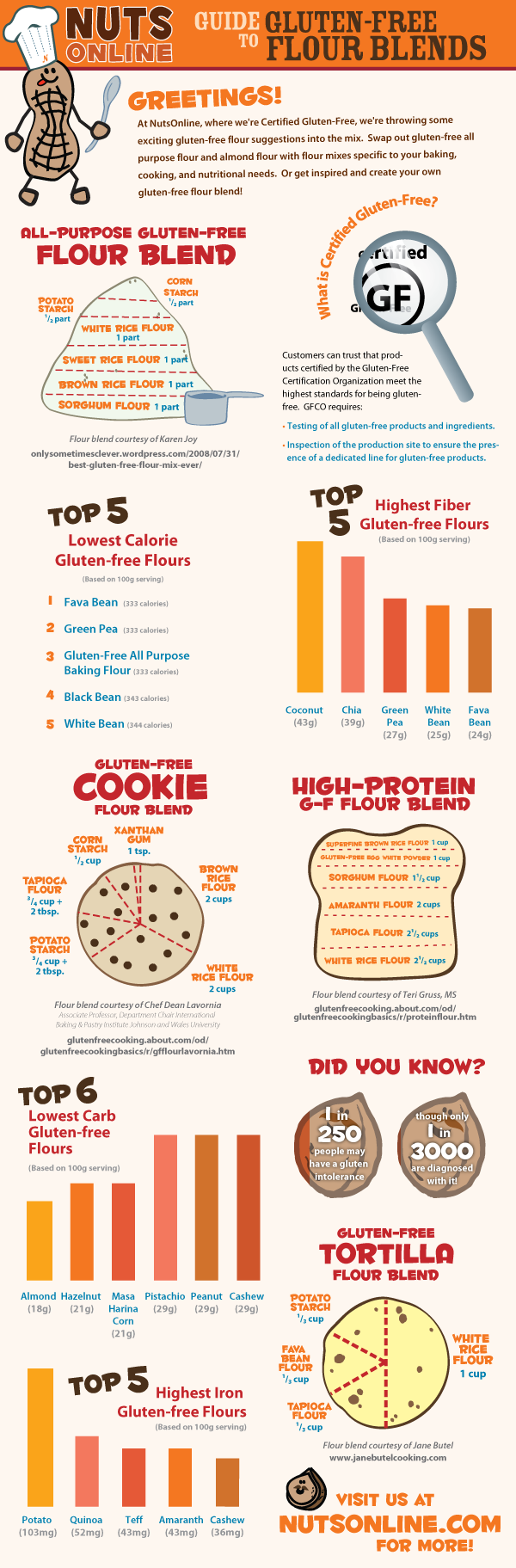 Guide To Gluten-Free Flour Blends [INFOGRAPHIC] | Infographic List