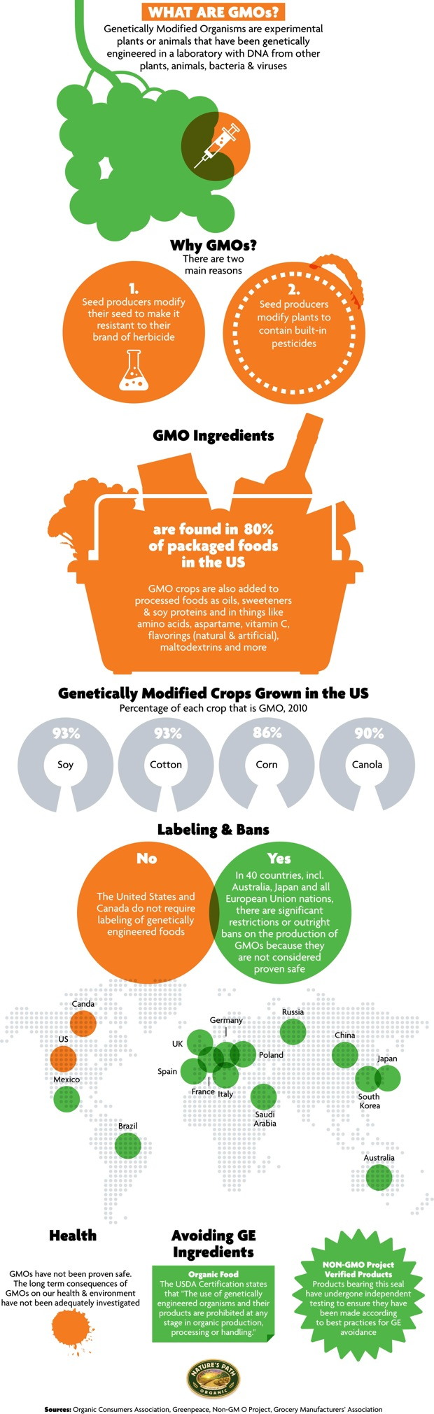genetically engineered foods are they healthy for human consumption