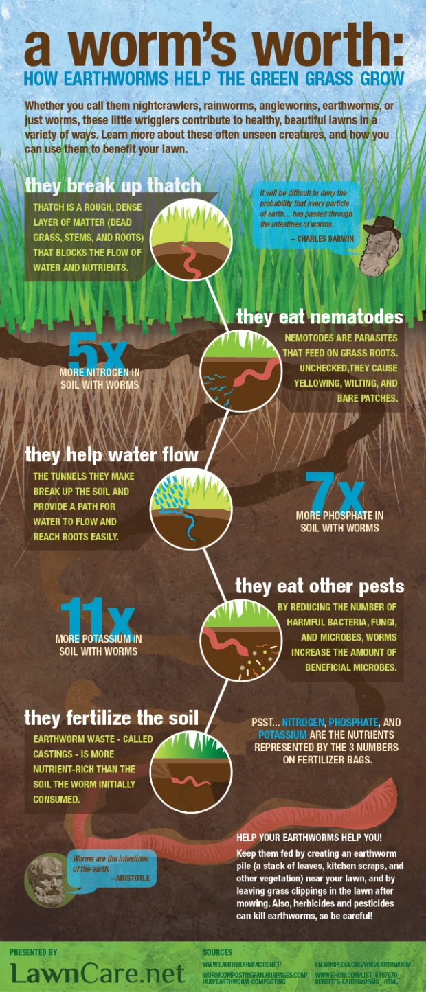 How Earthworms Help Grass Grow Graph