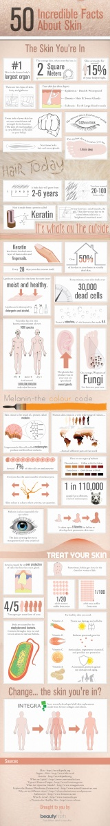 50-incredible-facts-about-skin_50b3dc8c136a0