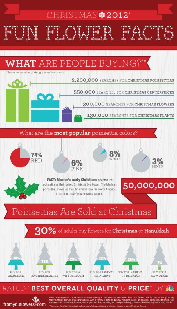 christmas-flower-infographic_50c8bbab1aaf2