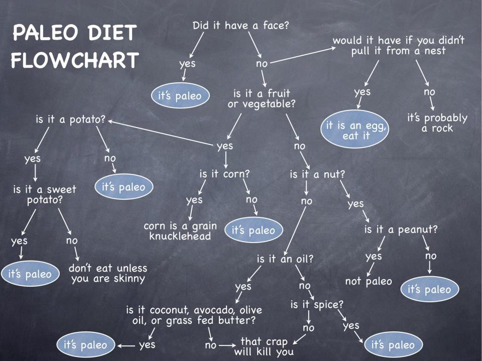 Paleo diet flowchart 50ef4b0aa8a02