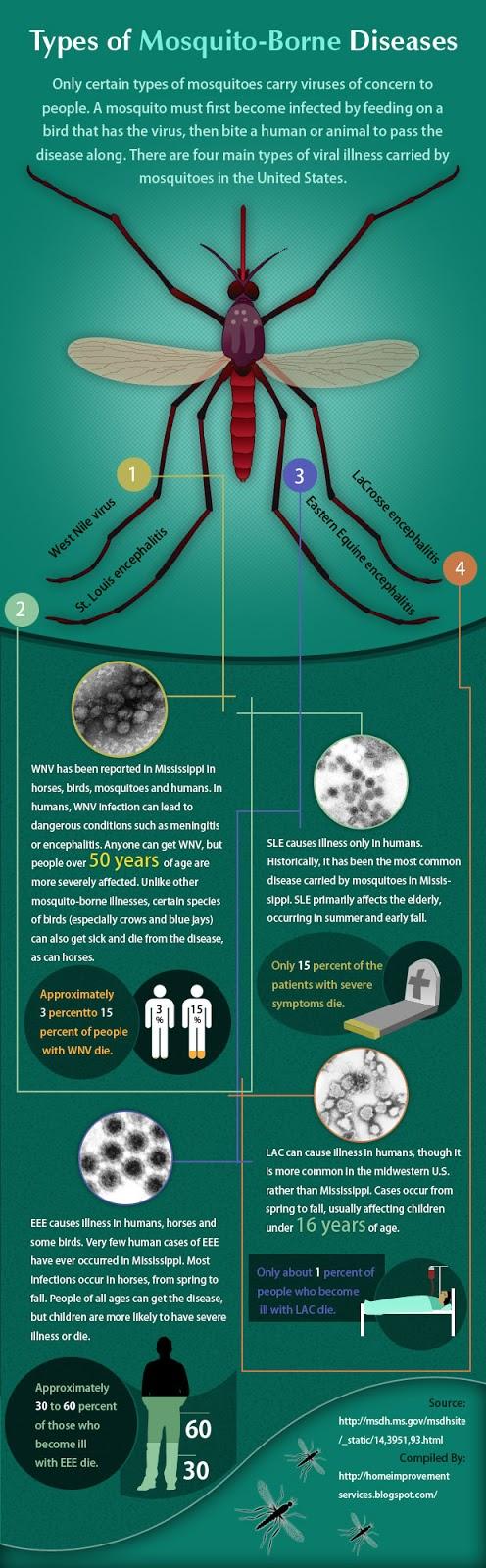 types-of-mosquitoborne-diseases_50ab19146592f