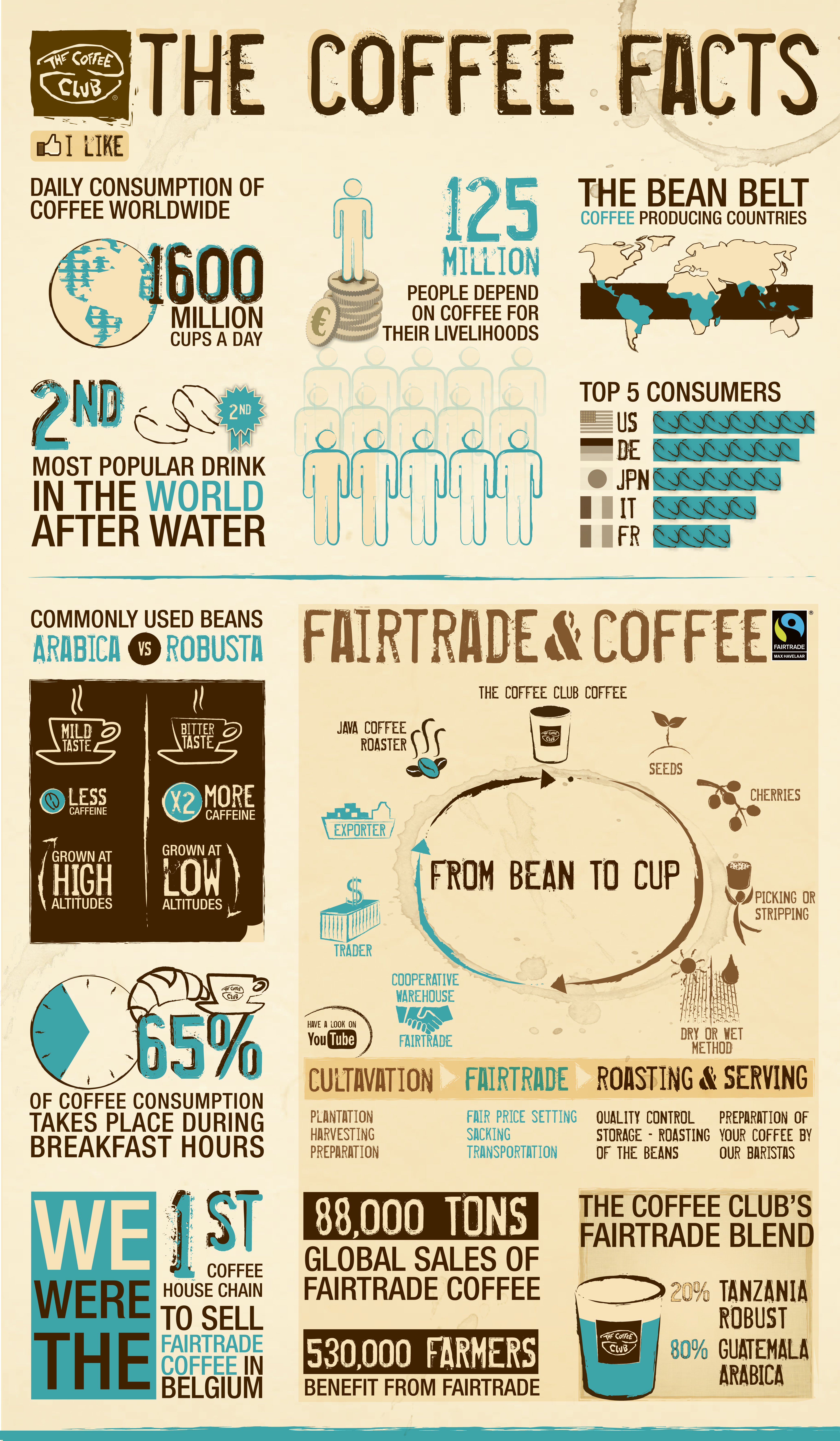 the-coffee-facts-by-the-coffee-club-belg