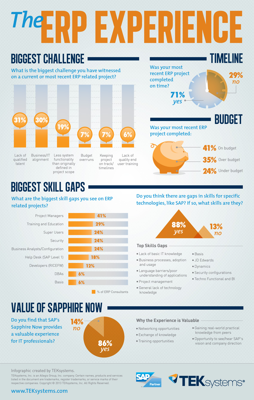 The Erp Experience Infographic Infographic List