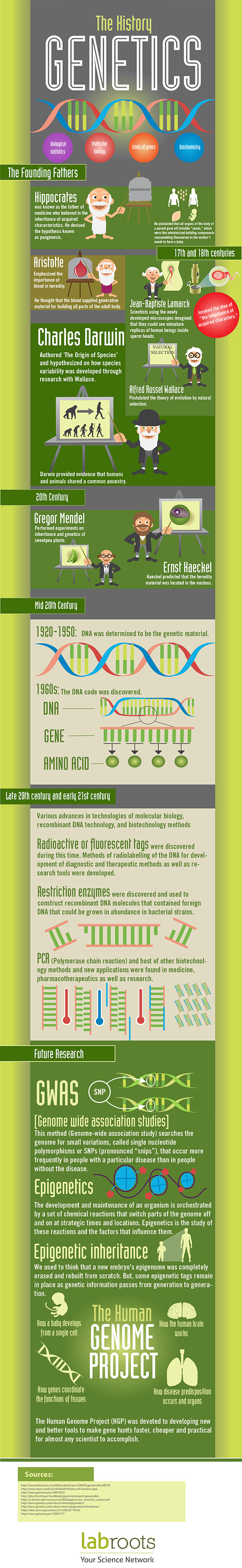 The History Of Genetics