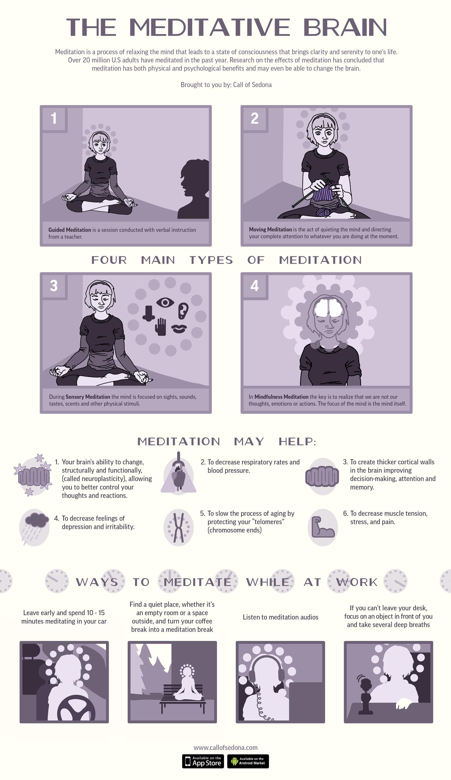 The Meditative Brain