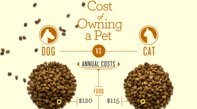 Cost of owning a pet featured